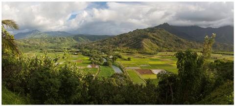 kauai Valley Panorama 50