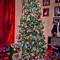 2010-ChristmasTree