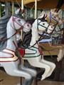 Geelong Carousel - horses