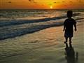 Max & the Setting Sun