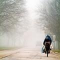 rider in the fog