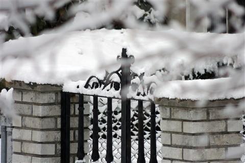 Focus on fence
