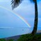 Cook Islands Rainbow