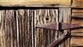 Worn Cedar