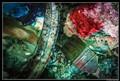 004 20-01-2013 Studio Gianmarco Capraro-2