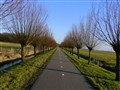 Almost endless bike road