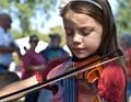 fiddler at work