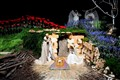 Nativity scene at Basilica Notre-Dame - Paris, France
