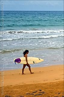 SurferVert
