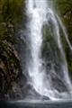 Milford Sound Falls