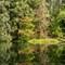 Hoh Rainforest  09 02 2015  KE  027