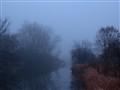 Foggy morning..