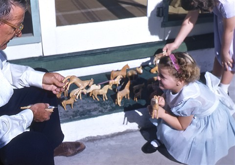 Victor's Carved Horses