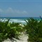Playa del Carmen 08 2 050