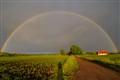 farmers rainbow