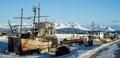 abandon ship in homer alaska