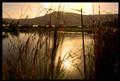 Ahula Lake