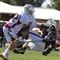 UofA Lacrosse