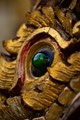 Refection of a temple in the eye of a Naga
