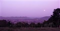 Purple sky and moon
