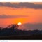 Sunrise_Selous