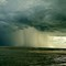 wiggins storm (2)
