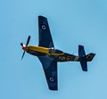 Mustang in WW II RCAF colours
