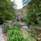 P1060295_waterfall gully_20100411_5