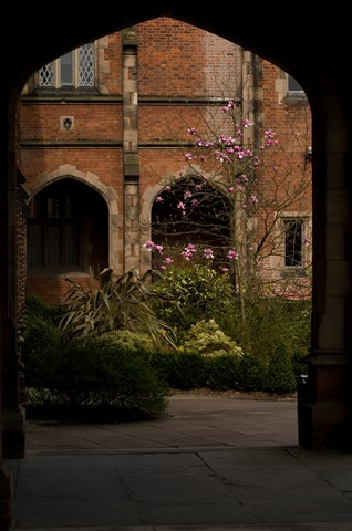 Through the archway.