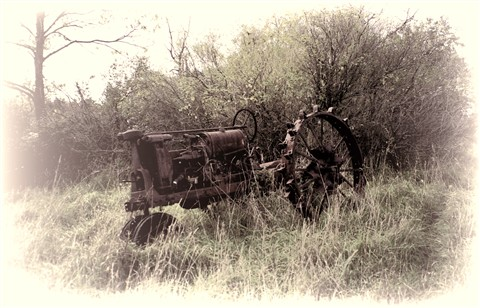 Old Tractor TBW Tint sm