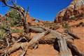 skyline arch, Arches National Park, Moab, UT