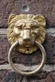 An Amsterdam Lion