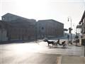 Morning i Rome