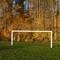 Goal...!
