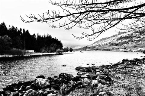 north wales B&W-6