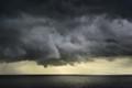 Storm Fringe