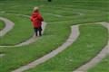 Labyrinth Boy