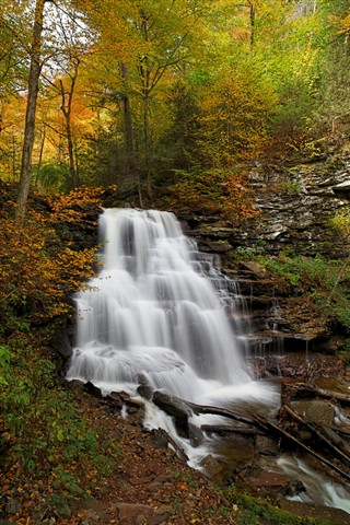 Erie Falls (Autumn)