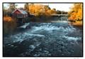 Meander River