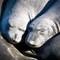 Eliphant Seals-118