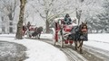 Horse Carriages in Central Park, New York