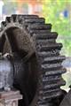 oily cogwheel