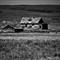 BW Old farm Prairie Farm House