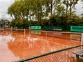 Tennis anyone, today?