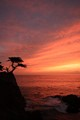 Sunset at 17-mile drive