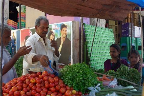 Veggie Vendor in streets