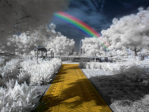 IR - Yellow Brick Road