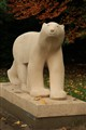 Polar bear in fall
