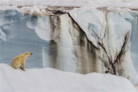Svalbard21Jul11_1099
