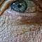 oeil-macro-peau